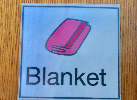 Blanket swings: vestibular input and opportunities for communication