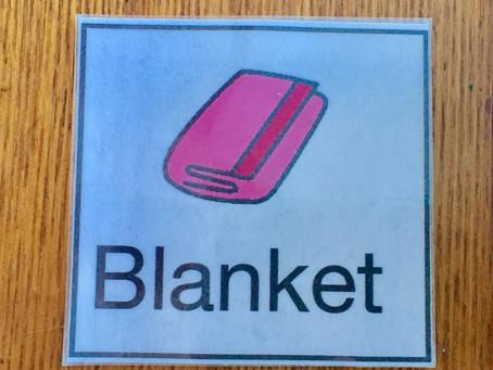 Blanket swings: vestibular input and opportunities for communication