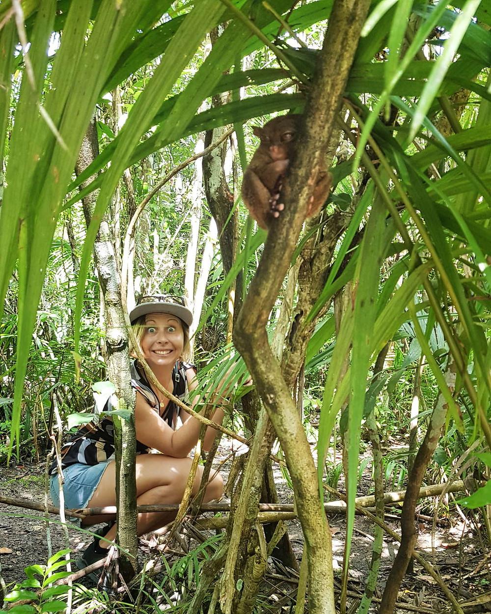 Philippine Tarsier Sanctuary in Corella