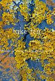 take ten book front.jpg