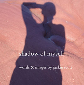 shadow of myself dustjacket.jpg