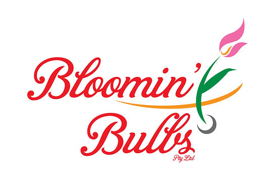 Bloomin Bulbs Logo