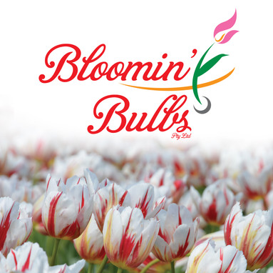 Bloomin Bulbs logo with a tulip