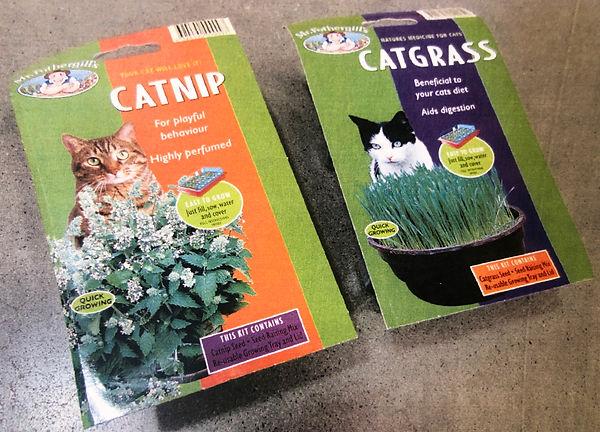 Cat Nip.jpg
