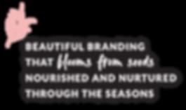 Beautiful Branding that blooms.png