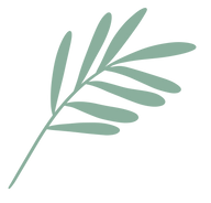 Green leaf 1.png