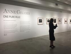 Anne Geddes Exhibition design