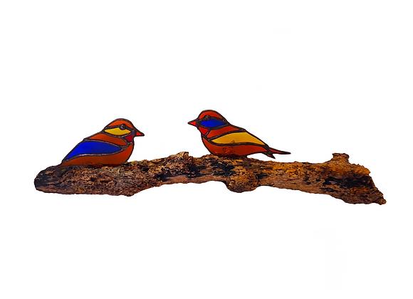 Aves Reposando