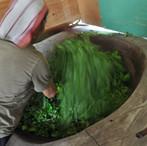 yunnan china tea 2.JPG