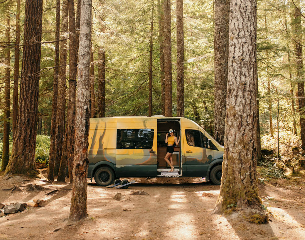 Lost in the Woods, Pacific Northwest