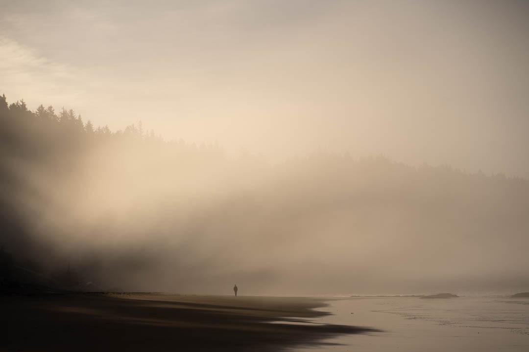 Dawn, Washington Coast