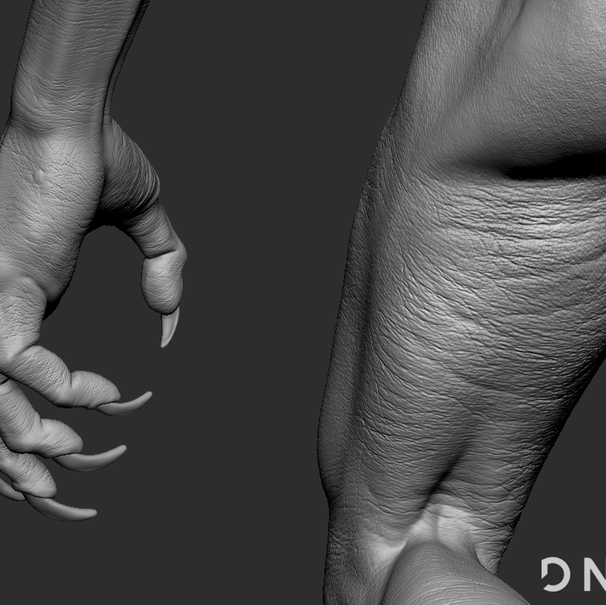Hand and Leg detail