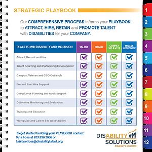 Strategic Playbook Chart.png