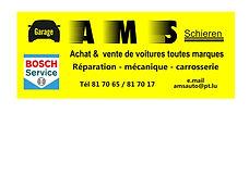 Logo AMS JPG PE.jpg
