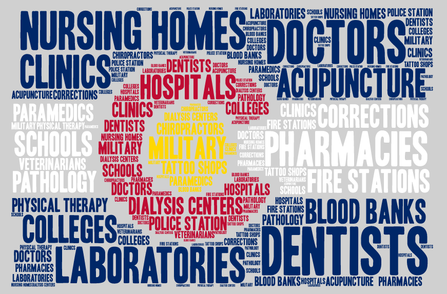 MSDI WordCloud Final for Website.png