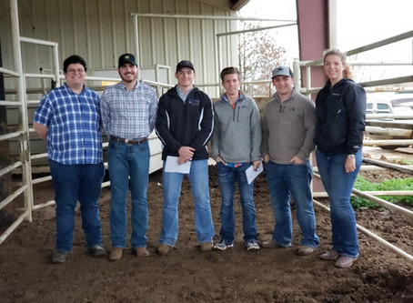North Carolina State Livestock Judging Team