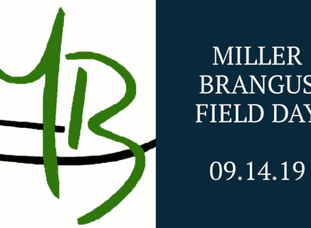 September 14th - Come out to our Field Day at Miller Brangus!