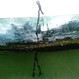 Storie di acqua e di luce_ L'onda dolcea