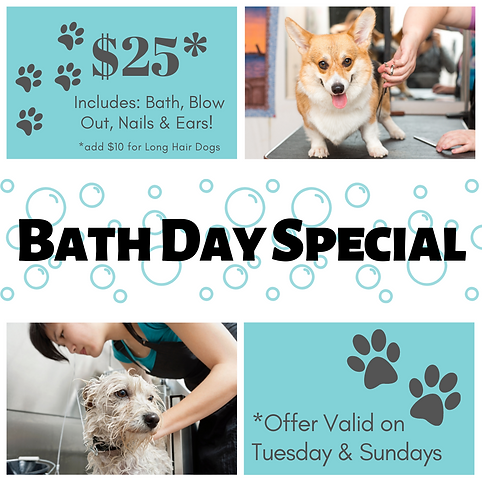 Bath Day Special-4.png