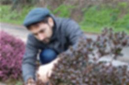 Pierre-Henri, le jardinier de Keltia Jardins, taille un arbuste dans un jardin au Rheu.