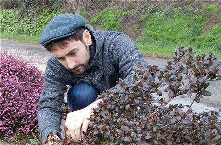 Pierre-Henri, le jardinier de Keltia Jardins taille un arbuste dans un jardin au Rheu.