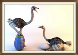 ostrich3.tif_edited.jpg