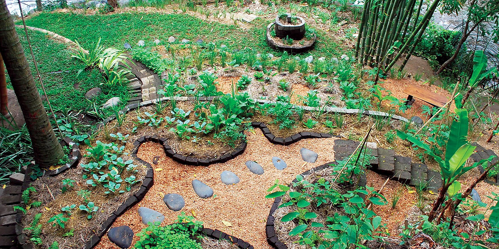 Introduction to Permaculture - November