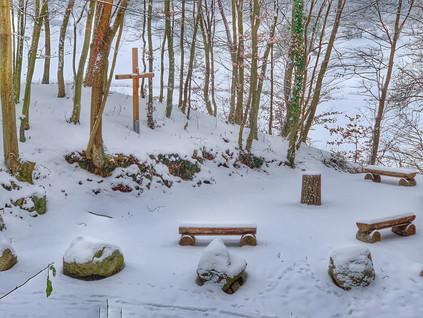 Winter im Klosterwald Heiligenkreuz