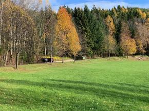 Kirchberg am Wechsel im Herbst