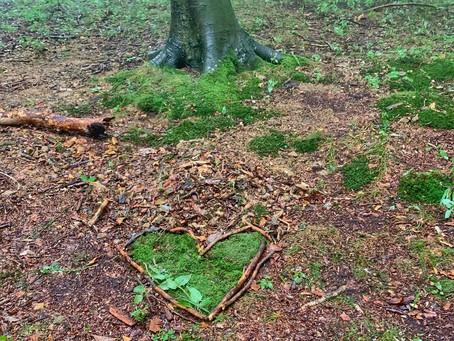 Grabpflege im Klosterwald