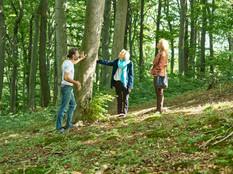 Am Baum im Klosterwald