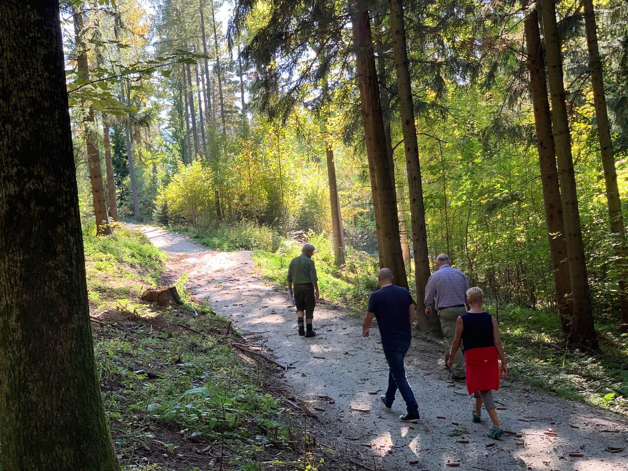 Kirchberg Führung im Klosterwald