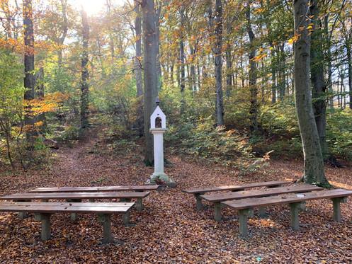 Wien Kahlenberg Andachtsplatz Herbst