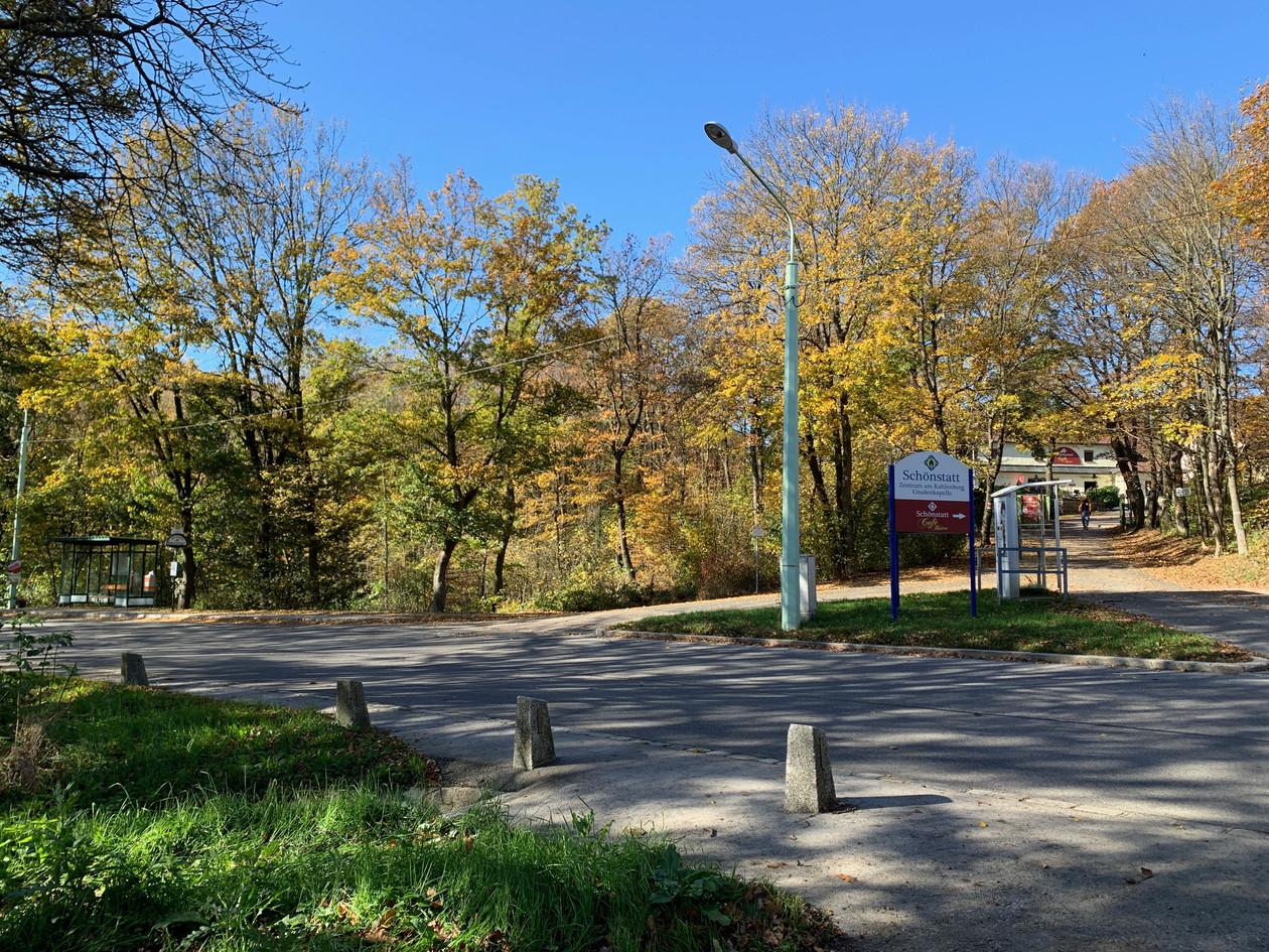 Klosterwald Wien Kahlenberg - Bushaltestelle Sulzwiese