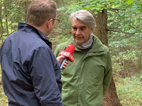 Drei Fragen an Forstmeister DI Christian Berner