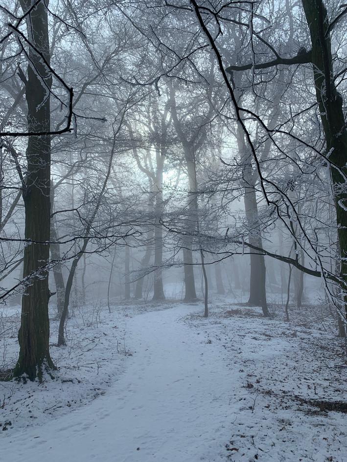 Winter Weg in Klosterwald