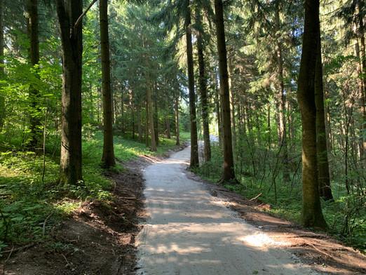 Kirchweg Hauptweg Klosterwald