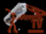 STREAMZ TV logo 2.png