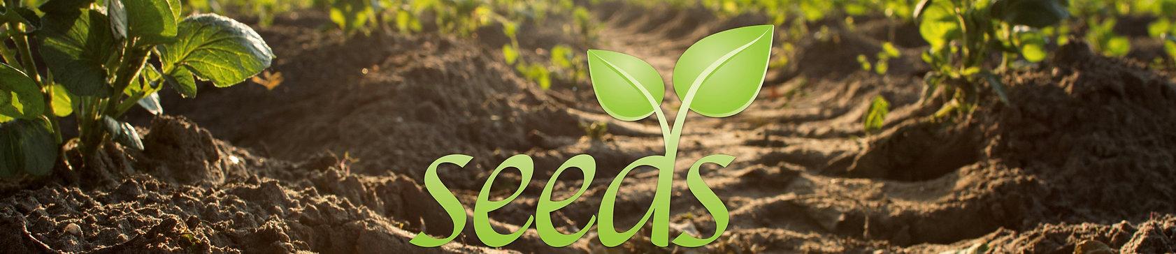 sowing seed[36728].jpeg