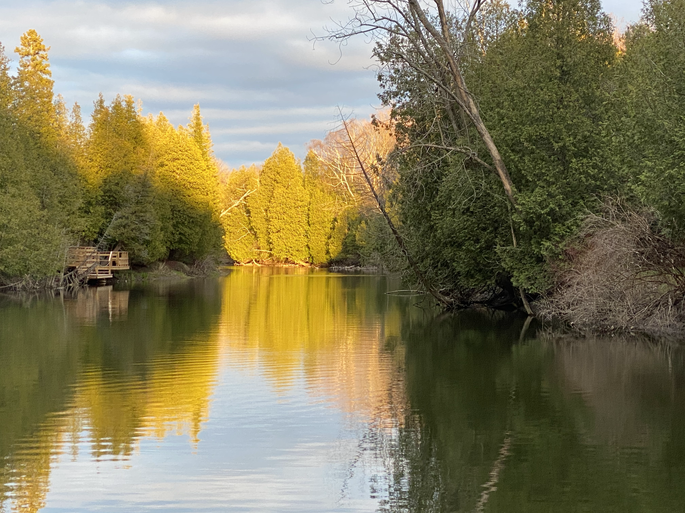 Golden hour on Sauble River