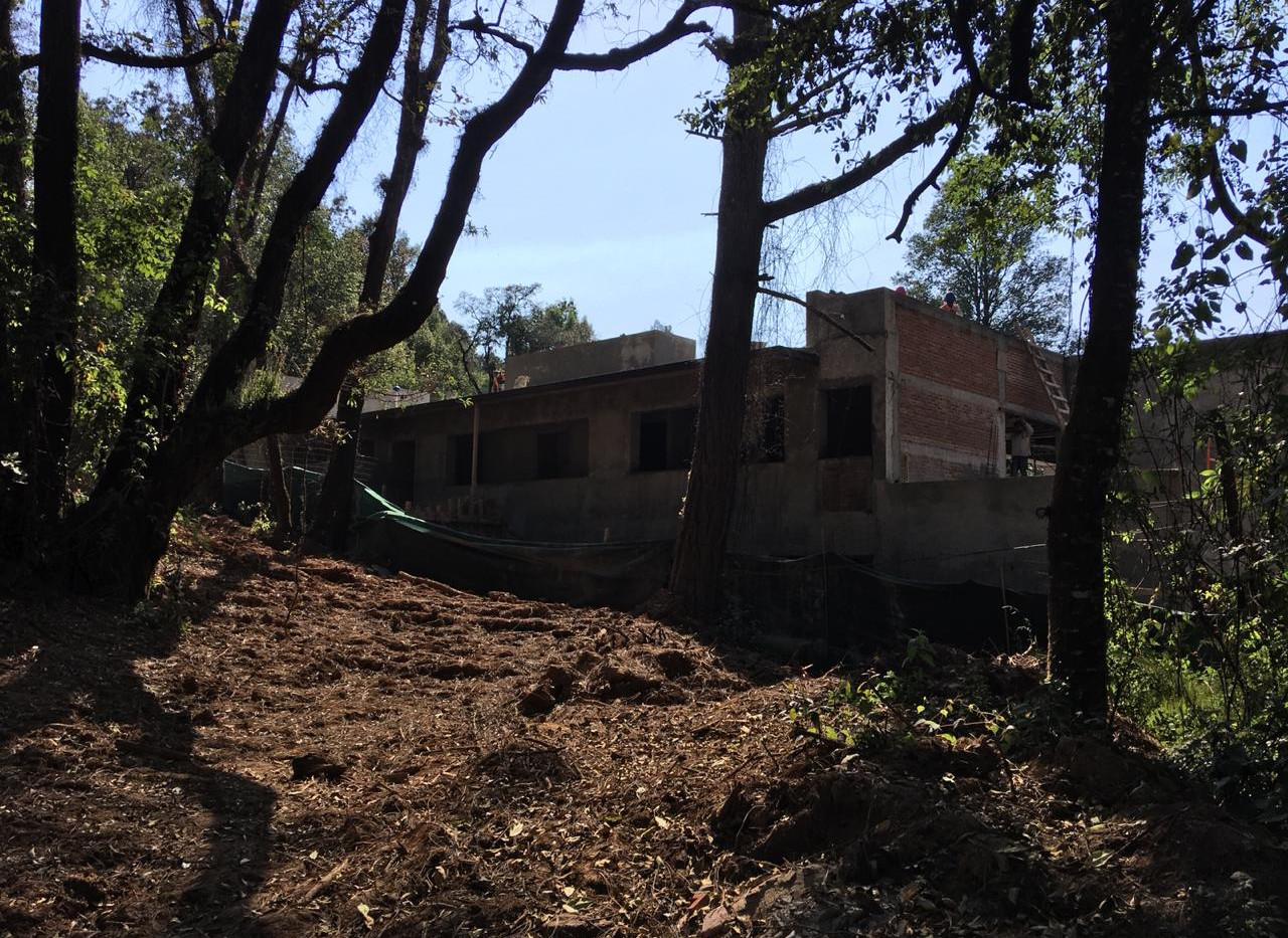 Casa Mi Bosque Avance de Obra V1 7.jpeg