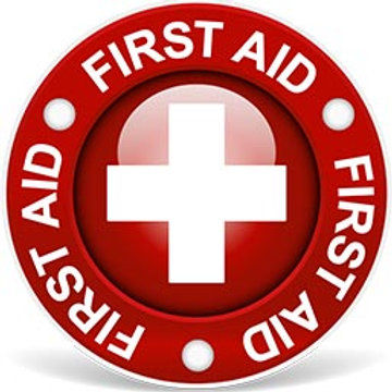 First Aid/ CPR/AED & More