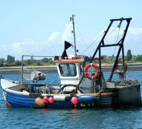 commercial-fishing_mainpic1.jpg