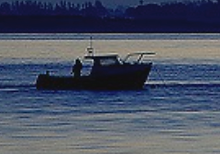 Havant Sea anglers.png