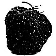 #strawberry.jpg