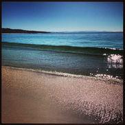 Hyams Beach Counsellor Sydney