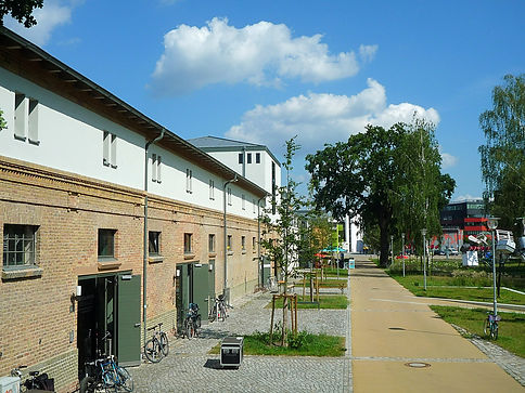 Potsdam Schiffbauergasse Dacheindeckung mit Doppelstehfalz aus Rheinzink pre patina schiefergrau.