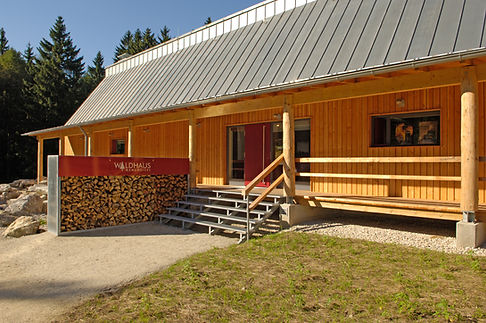 Mehlmeisel Waldhaus Dacheindeckung in Doppelstehfalz aus Rheinzink walzblank.