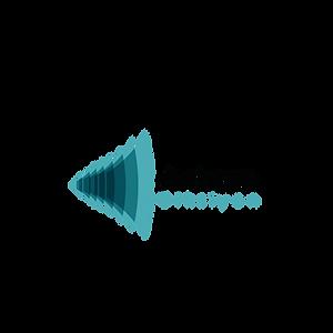 Ankara diksiyon