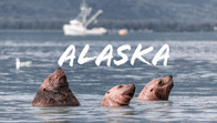 Hacia rutas salvajes: ¡Alaska!